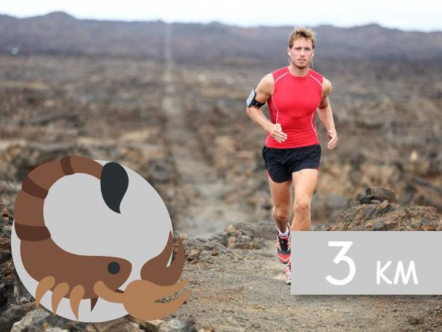 Испытание Пробеги 3 км за 10 минут